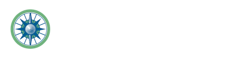 Global Tax Focus